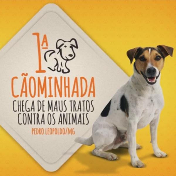 caominhada_capa_video